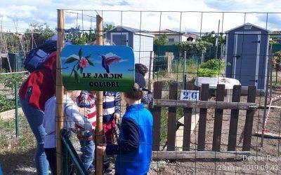 Visite des Pilettes aux jardins familiaux