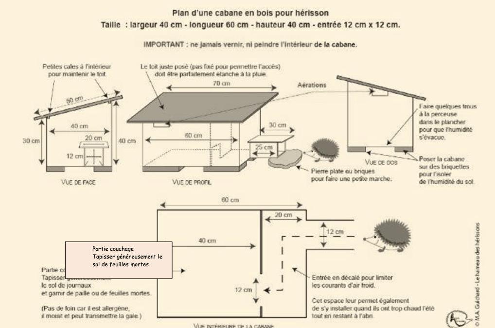 Plan d'une cabane pour hérisson