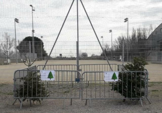 Point dépôt des sapins de Noël